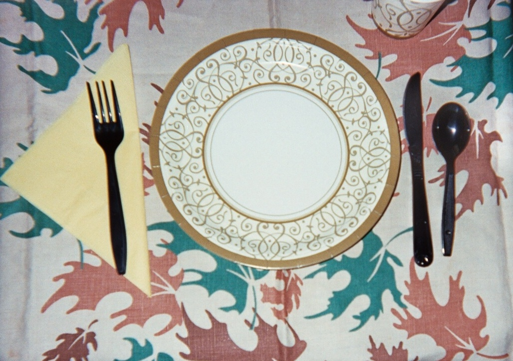 paper plates as teaching tools great - Decorative Paper Plates