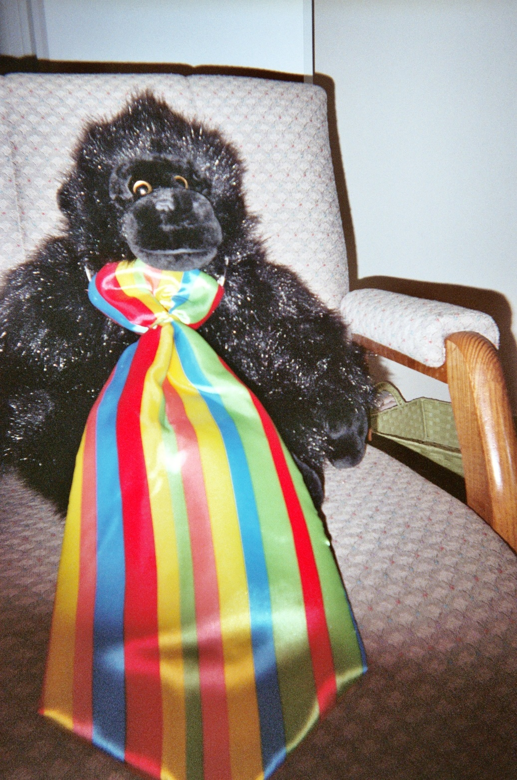 """""""Harry is wearing his rainbow tie. He loves the Rainbow of Learning!"""""""